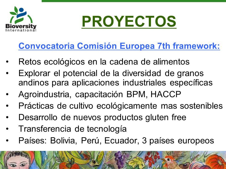 PROYECTOS Convocatoria Comisión Europea 7th framework: