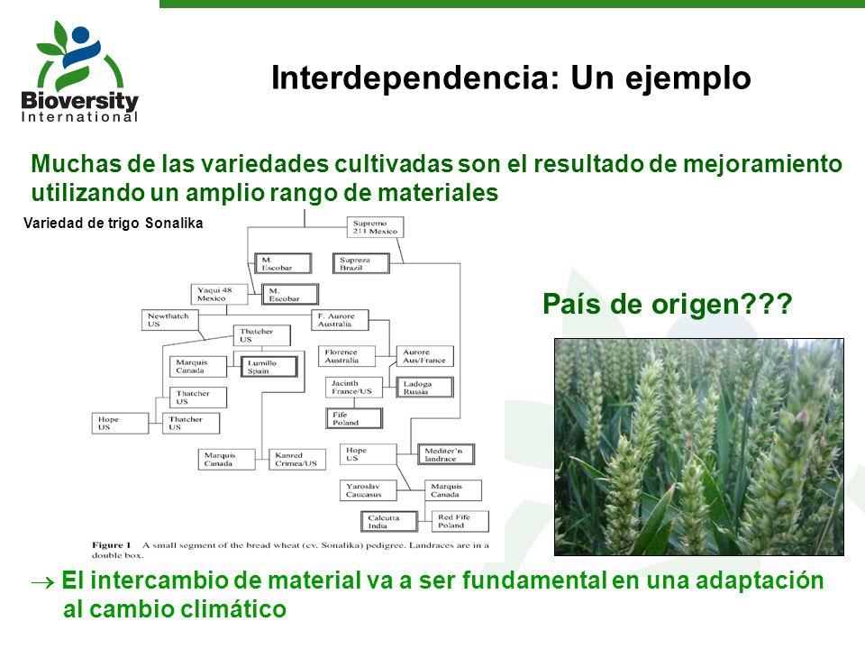 Interdependencia: Un ejemplo
