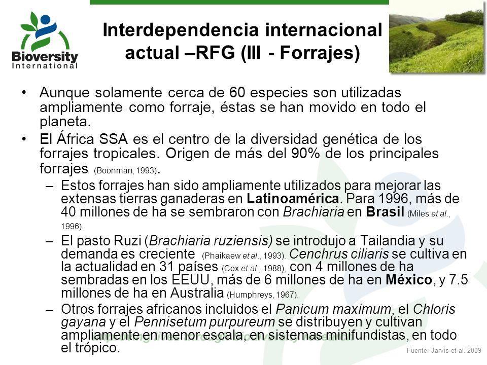 Interdependencia internacional actual –RFG (III - Forrajes)
