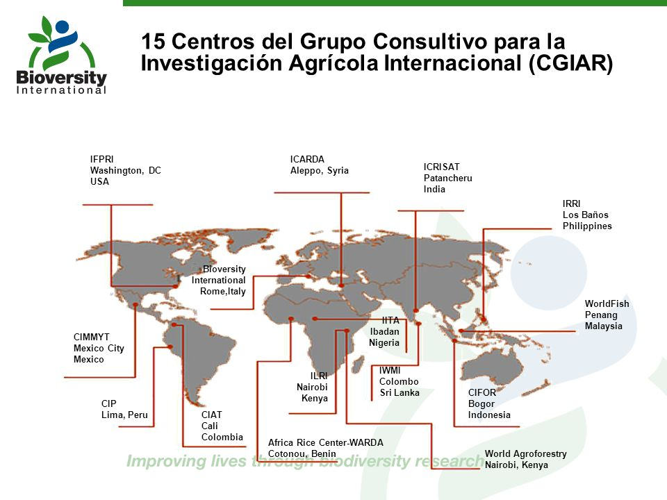 15 Centros del Grupo Consultivo para la Investigación Agrícola Internacional (CGIAR)