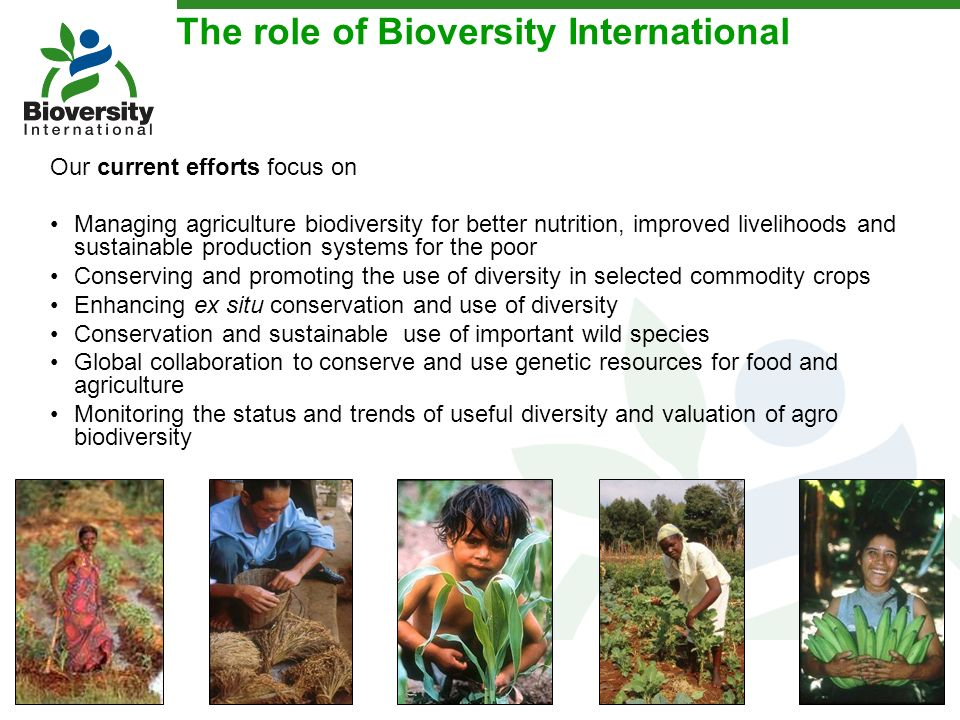 The role of Bioversity International