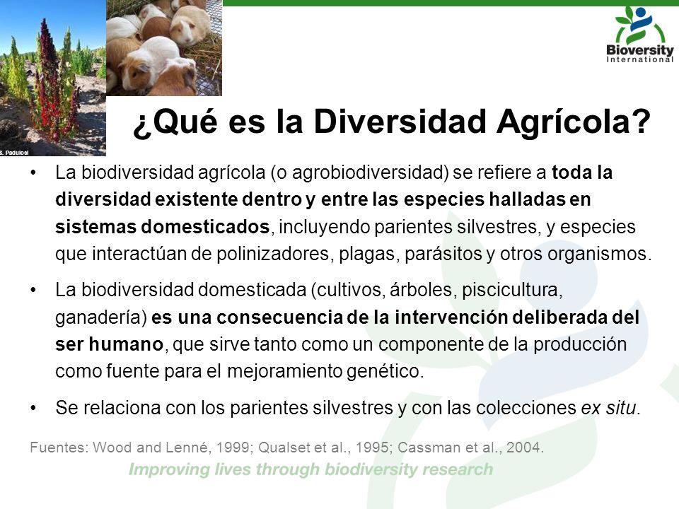 ¿Qué es la Diversidad Agrícola