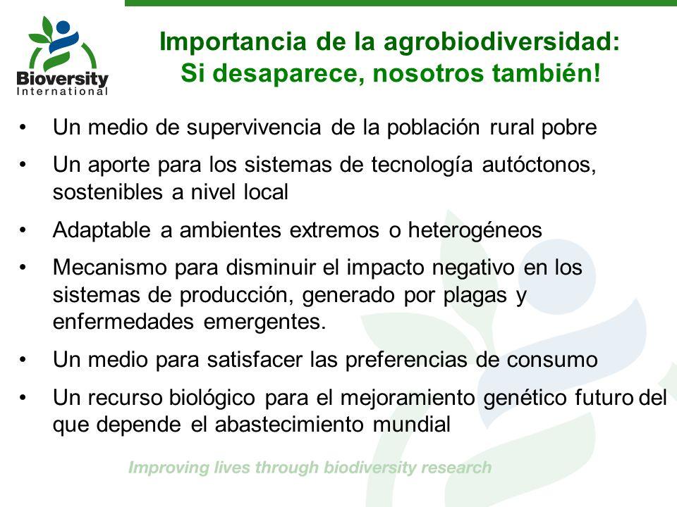 Importancia de la agrobiodiversidad: Si desaparece, nosotros también!