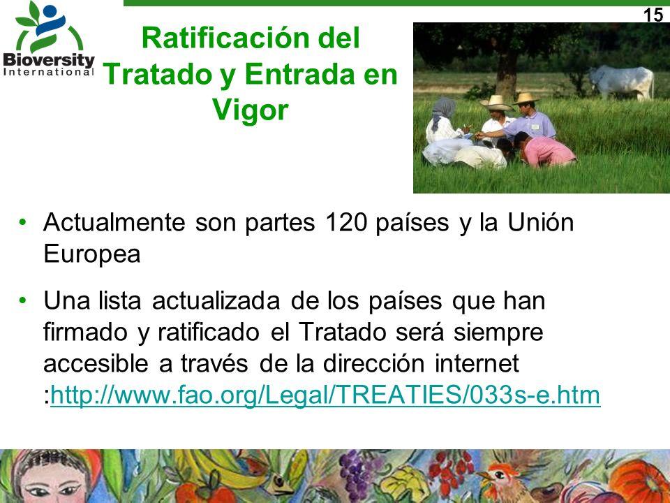Ratificación del Tratado y Entrada en Vigor