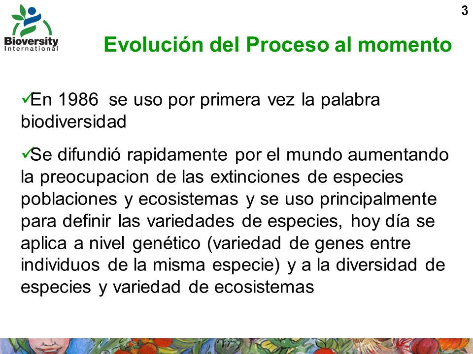 Evolución del Proceso al momento