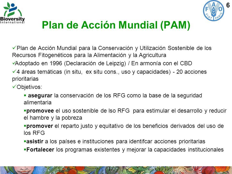 Plan de Acción Mundial (PAM)