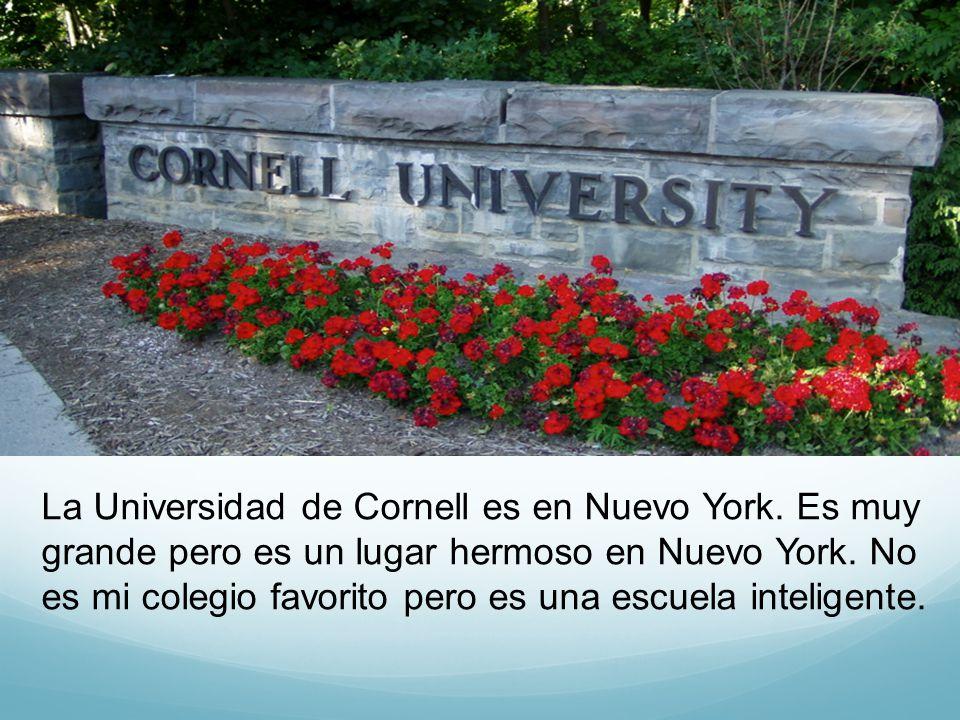 La Universidad de Cornell es en Nuevo York