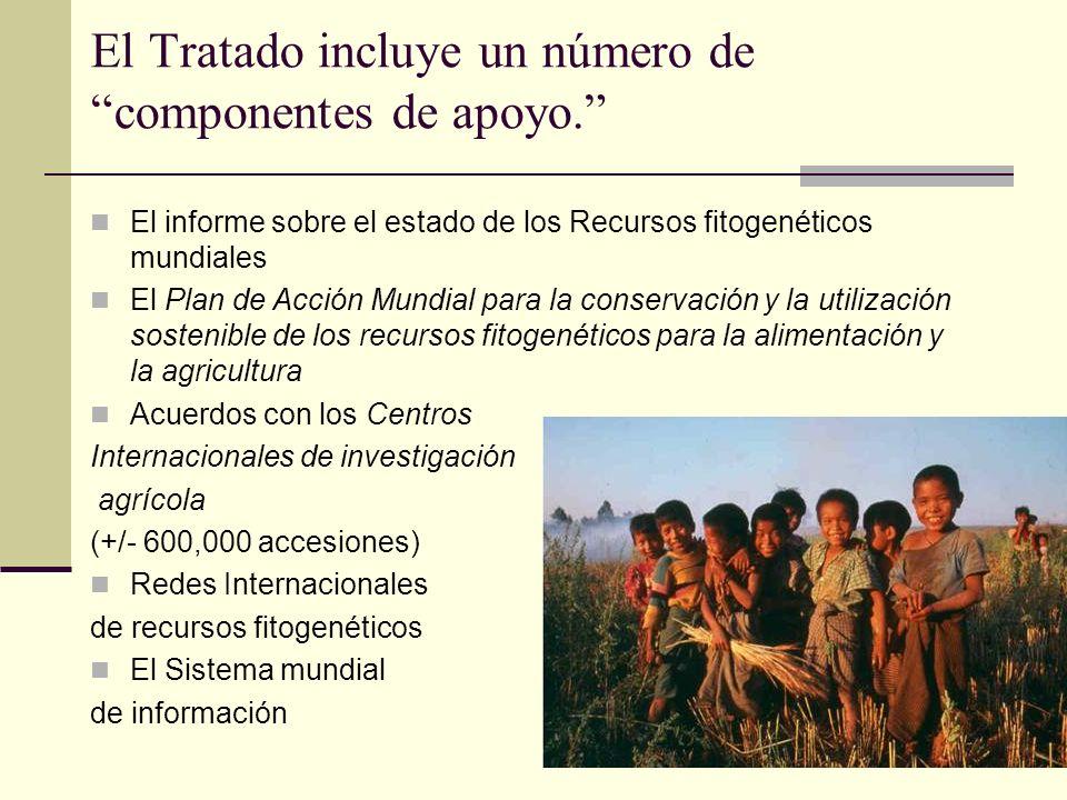 El Tratado incluye un número de componentes de apoyo.