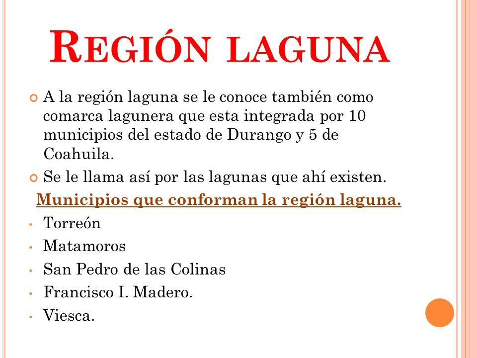 Municipios que conforman la región laguna.