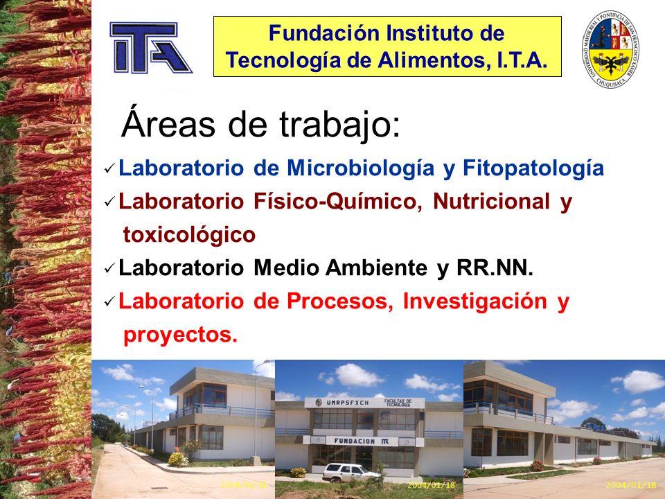 Fundación Instituto de Tecnología de Alimentos, I.T.A.
