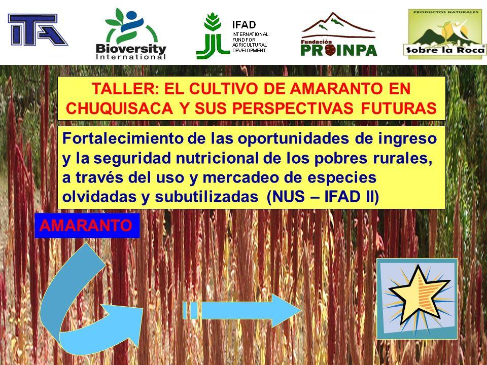 TALLER: EL CULTIVO DE AMARANTO EN CHUQUISACA Y SUS PERSPECTIVAS FUTURAS