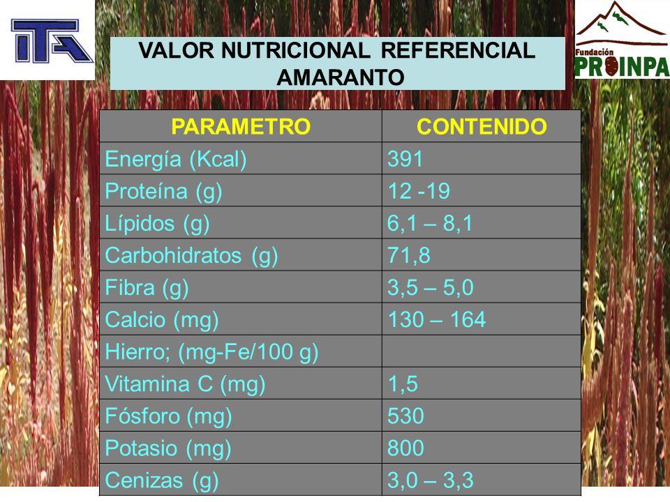 VALOR NUTRICIONAL REFERENCIAL