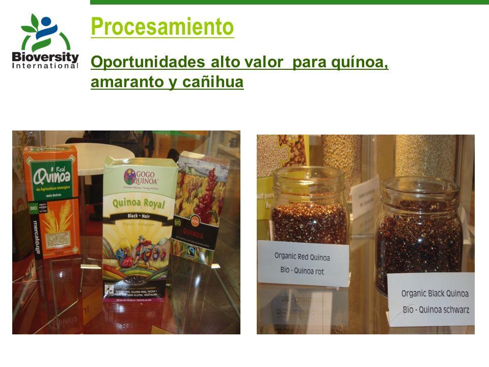 Procesamiento Oportunidades alto valor para quínoa, amaranto y cañihua