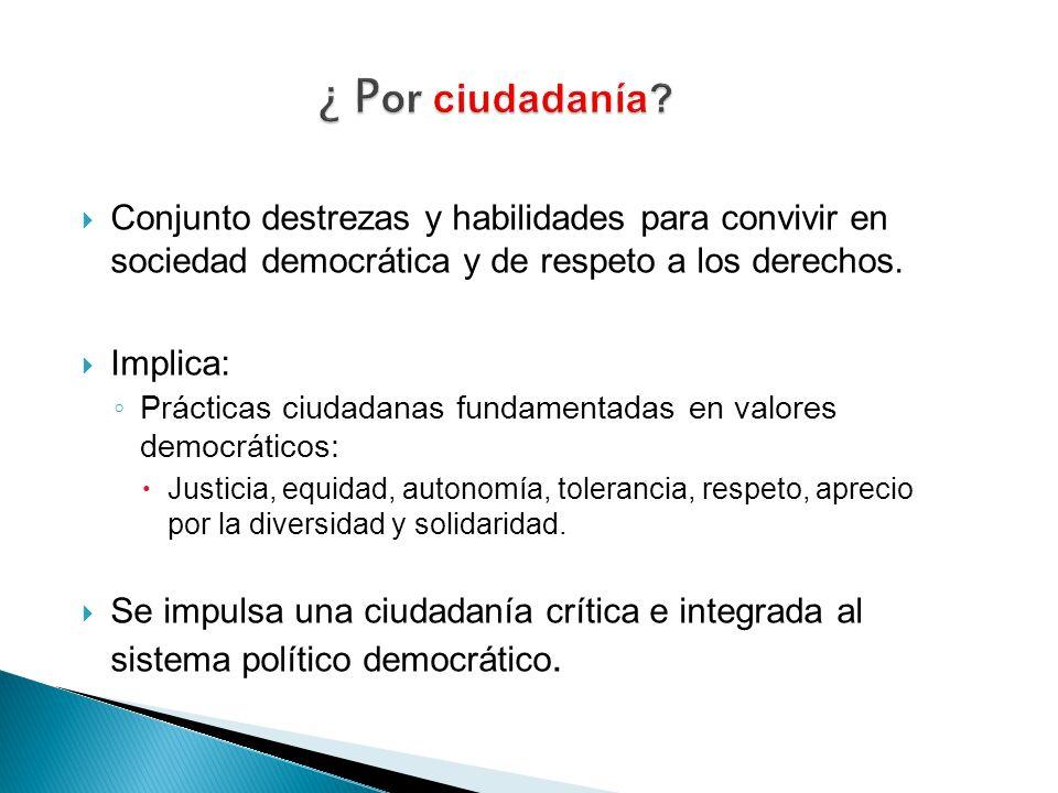 ¿ Por ciudadanía Conjunto destrezas y habilidades para convivir en sociedad democrática y de respeto a los derechos.