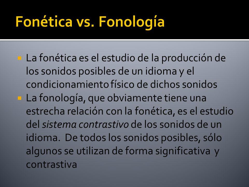 Fonética vs. Fonología La fonética es el estudio de la producción de los sonidos posibles de un idioma y el condicionamiento físico de dichos sonidos.