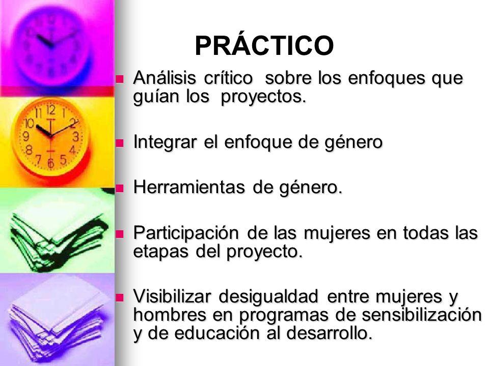 PRÁCTICO Análisis crítico sobre los enfoques que guían los proyectos.