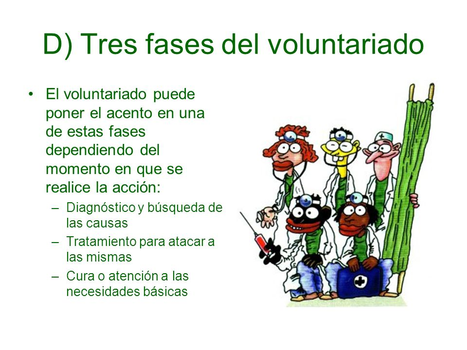 D) Tres fases del voluntariado