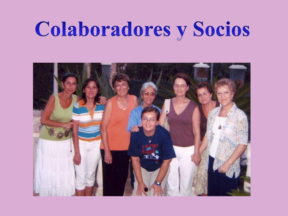 Colaboradores y Socios