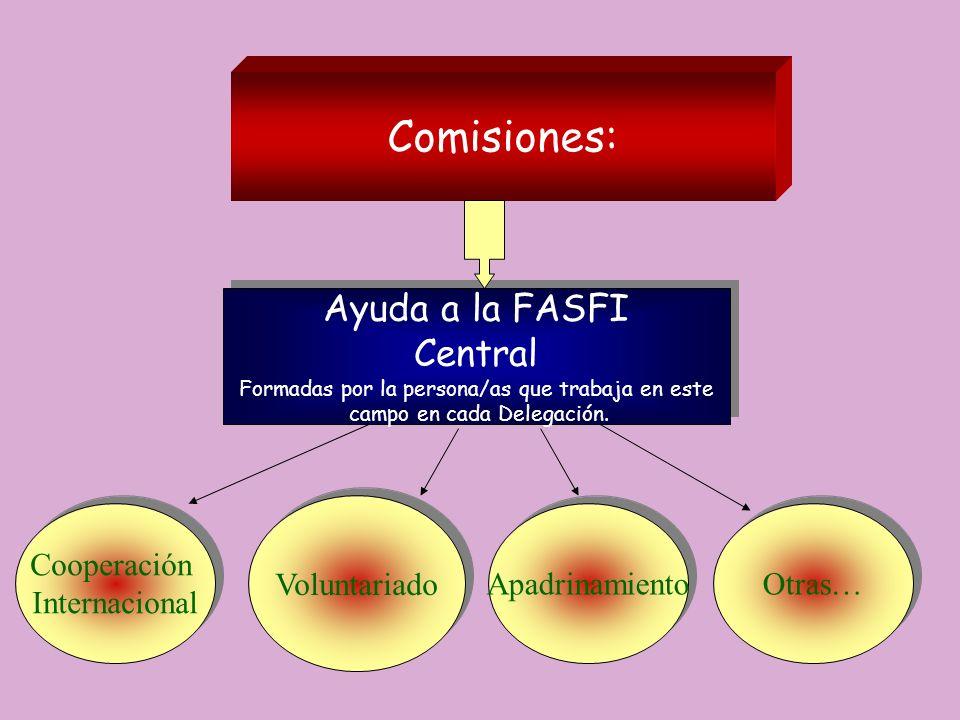 Comisiones: Ayuda a la FASFI Central Voluntariado Cooperación