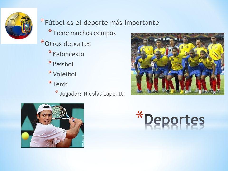 Deportes Fútbol es el deporte más importante Otros deportes