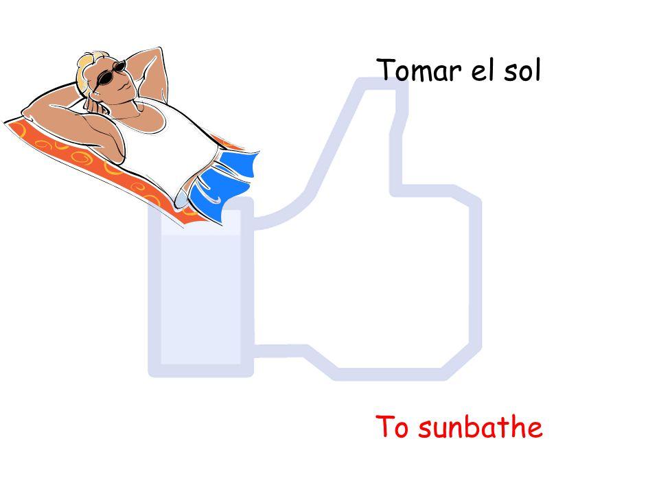 Tomar el sol To sunbathe