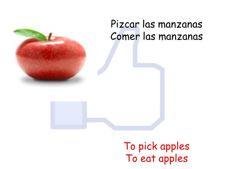 Pizcar las manzanas Comer las manzanas To pick apples To eat apples