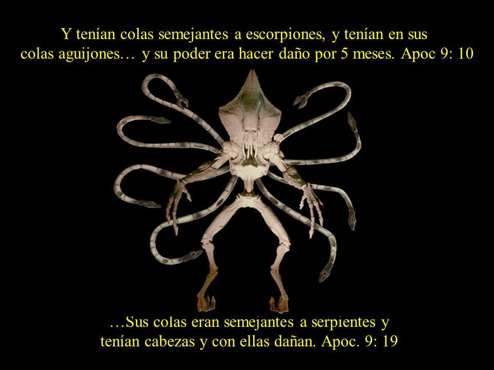 Y tenían colas semejantes a escorpiones, y tenían en sus