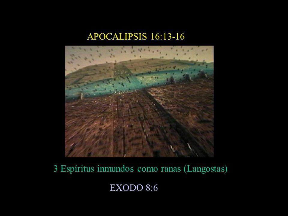 APOCALIPSIS 16:13-16 3 Espíritus inmundos como ranas (Langostas) EXODO 8:6