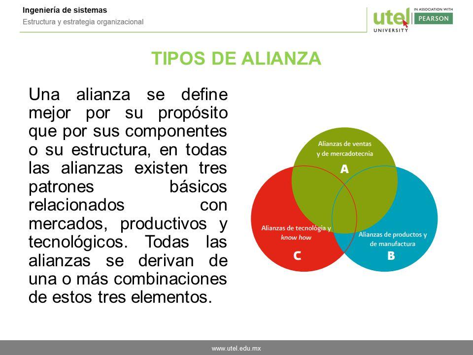TIPOS DE ALIANZA