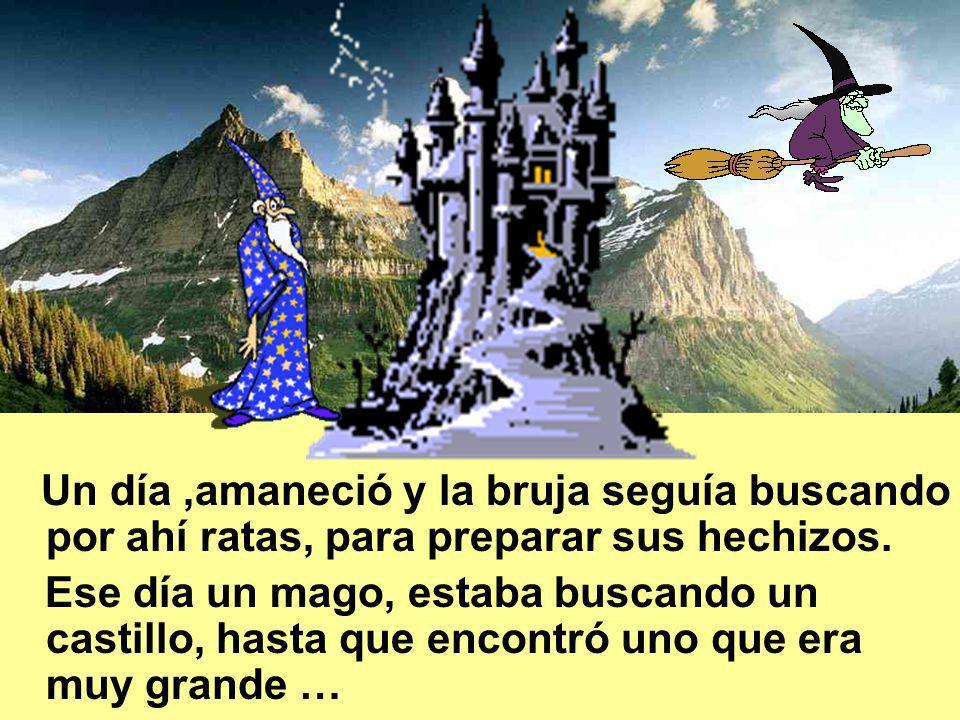 Un día ,amaneció y la bruja seguía buscando por ahí ratas, para preparar sus hechizos.