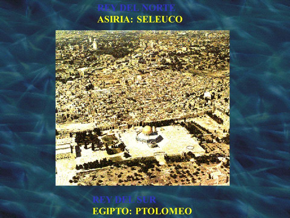 REY DEL NORTE ASIRIA: SELEUCO REY DEL SUR EGIPTO: PTOLOMEO