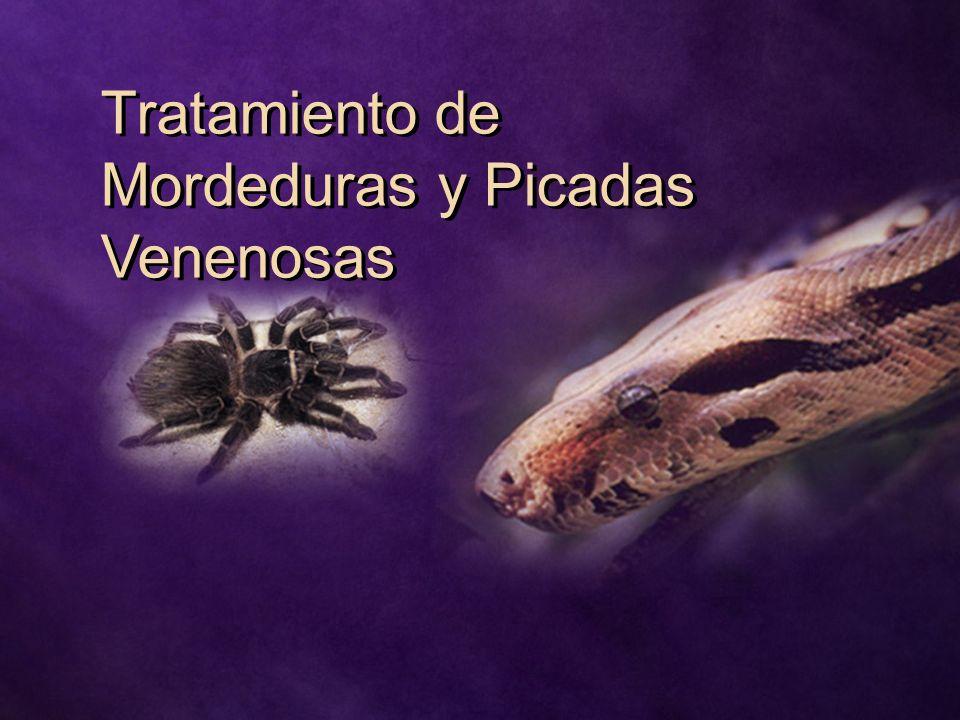 Tratamiento de Mordeduras y Picadas Venenosas