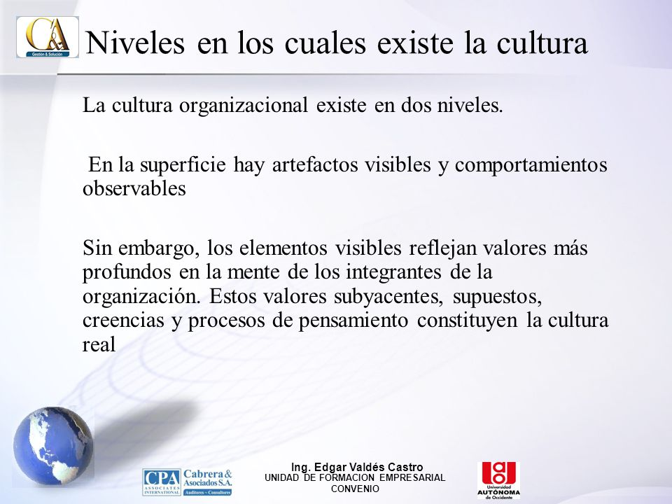 Niveles en los cuales existe la cultura