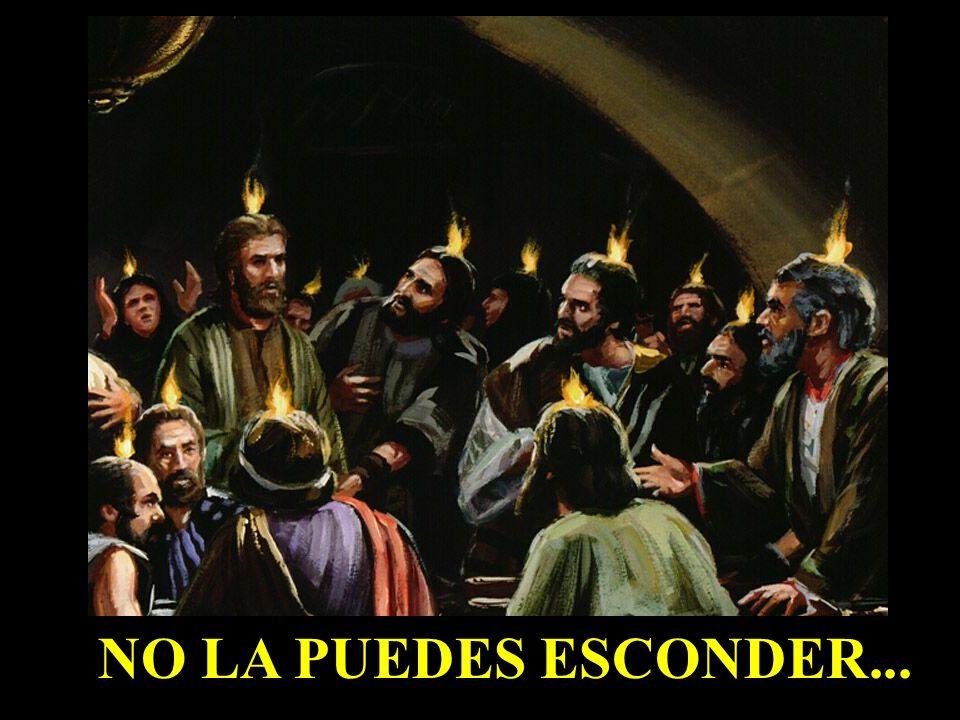 NO LA PUEDES ESCONDER...