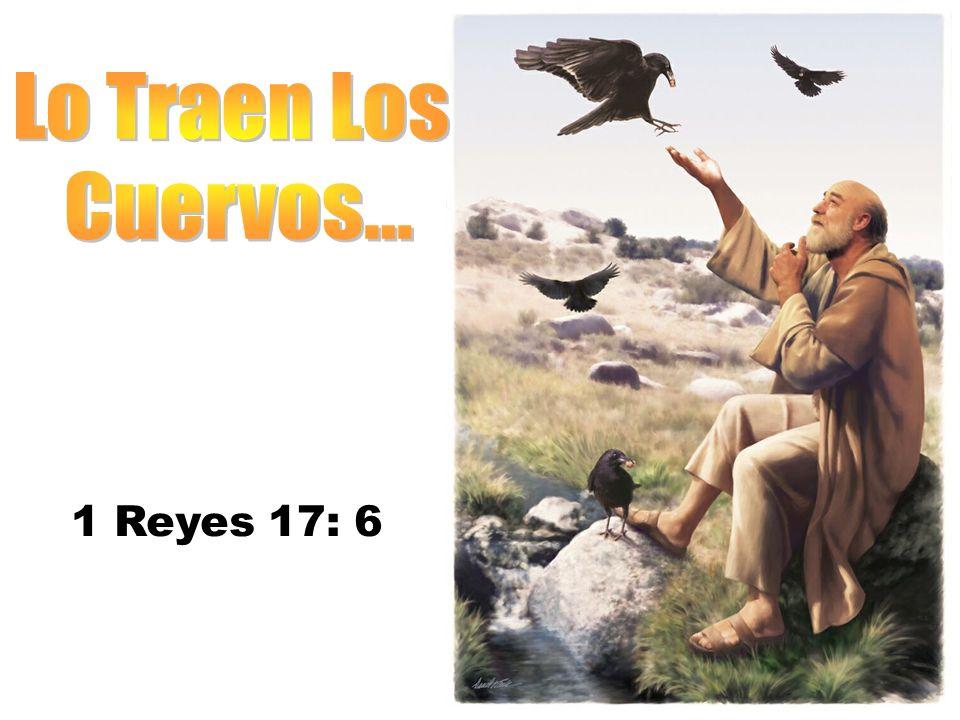 Lo Traen Los Cuervos... 1 Reyes 17: 6