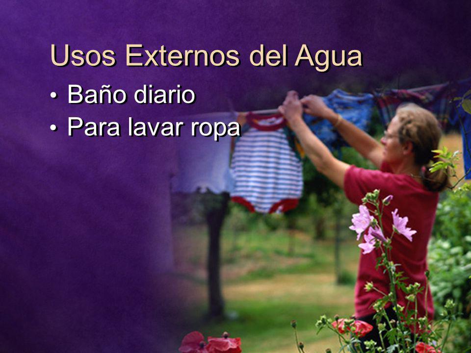Usos Externos del Agua Baño diario Para lavar ropa