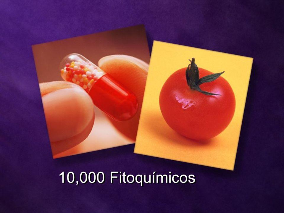 10,000 Fitoquímicos