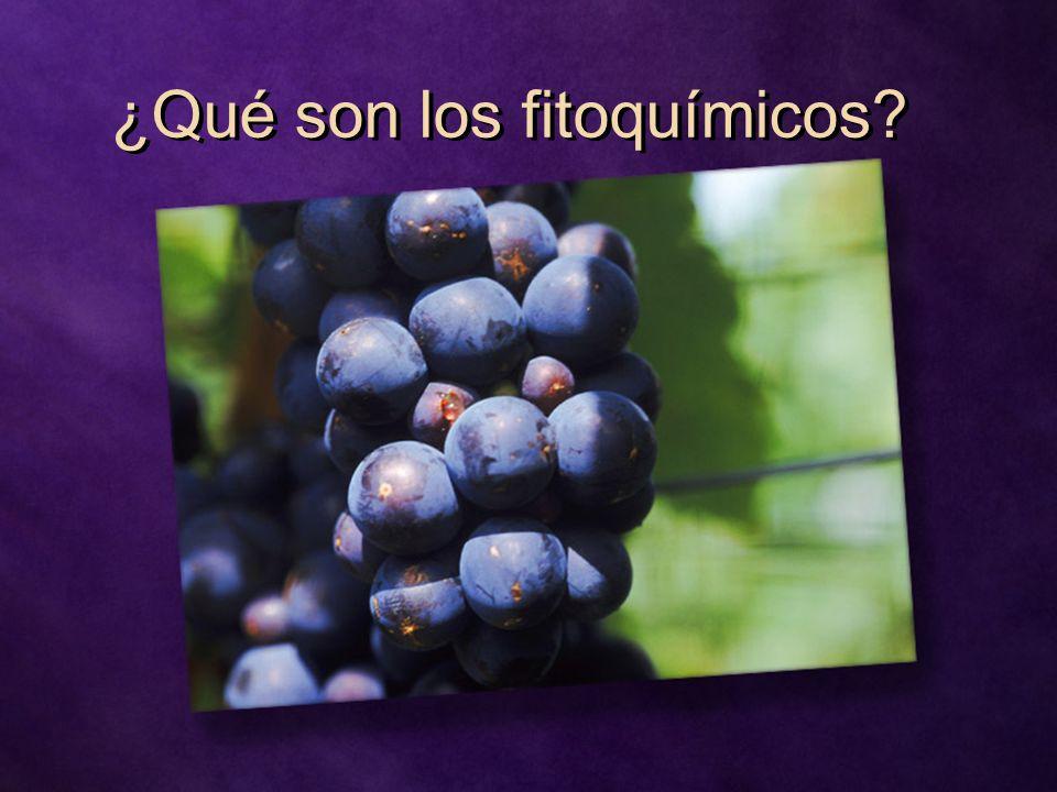 ¿Qué son los fitoquímicos