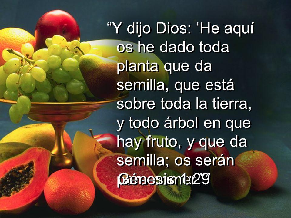 Y dijo Dios: 'He aquí os he dado toda planta que da semilla, que está sobre toda la tierra, y todo árbol en que hay fruto, y que da semilla; os serán para comer.'