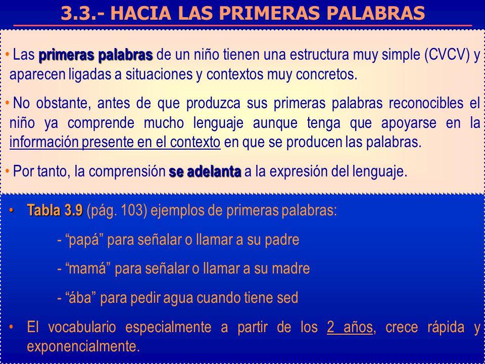 3.3.- HACIA LAS PRIMERAS PALABRAS