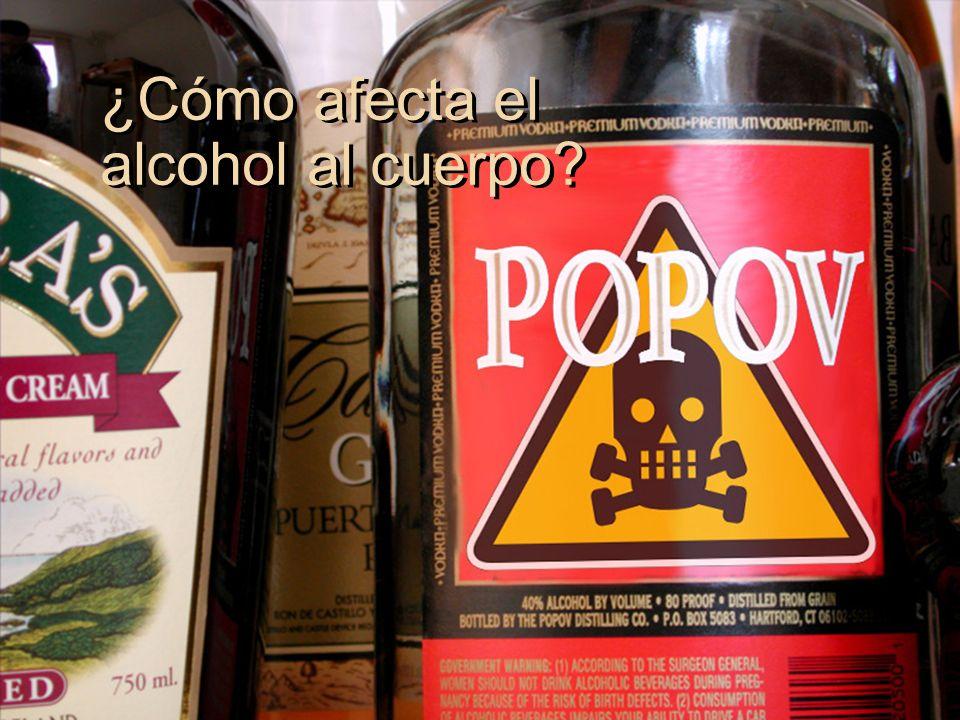 ¿Cómo afecta el alcohol al cuerpo