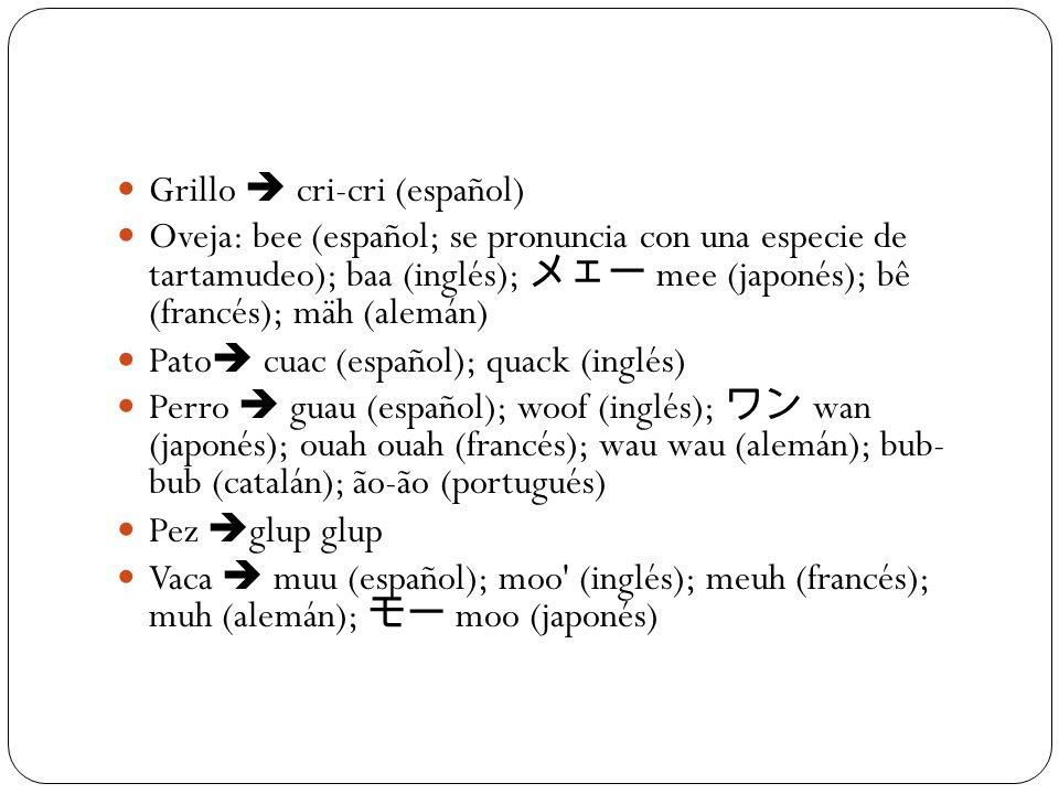 Grillo  cri-cri (español)