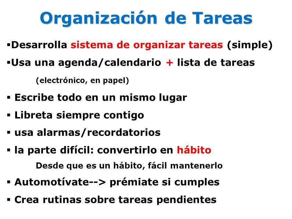Organización de Tareas