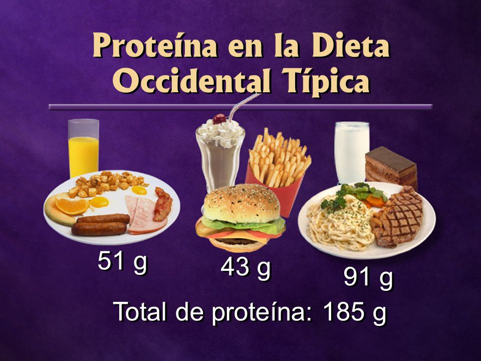 Proteína en la Dieta Occidental Típica