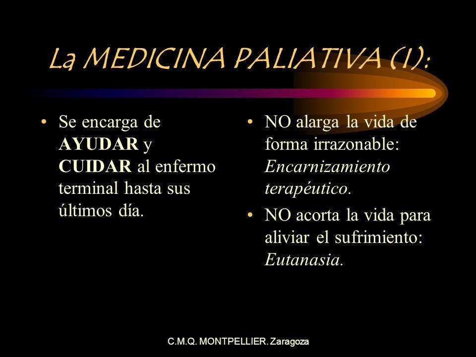 La MEDICINA PALIATIVA (I):