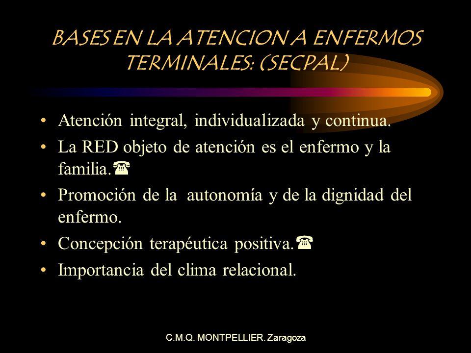 BASES EN LA ATENCION A ENFERMOS TERMINALES: (SECPAL)