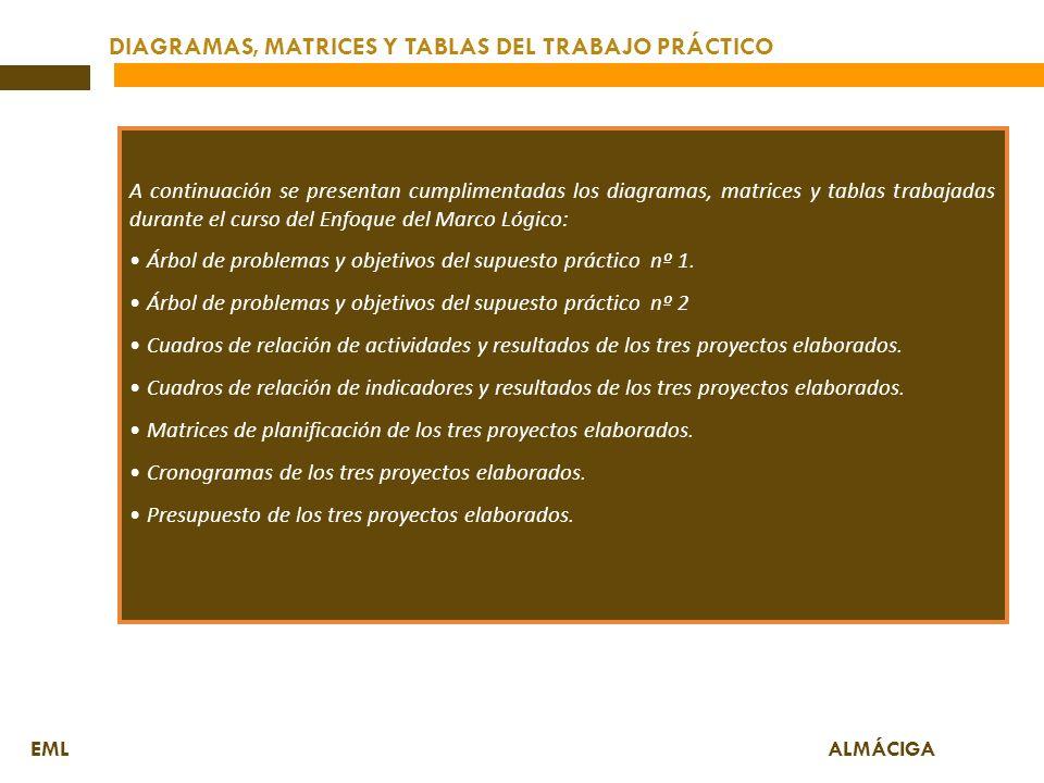 DIAGRAMAS, MATRICES Y TABLAS DEL TRABAJO PRÁCTICO