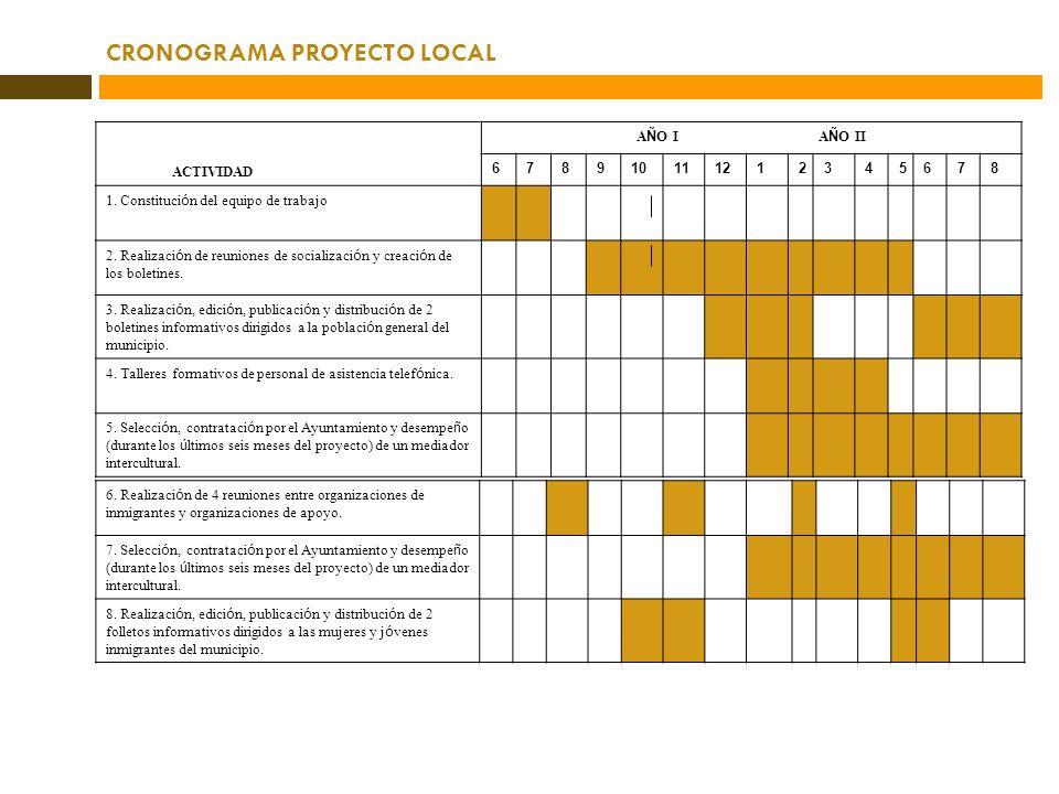 CRONOGRAMA PROYECTO LOCAL