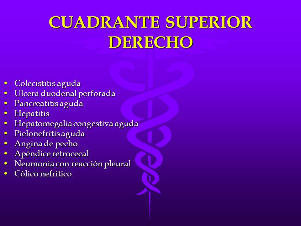 CUADRANTE SUPERIOR DERECHO