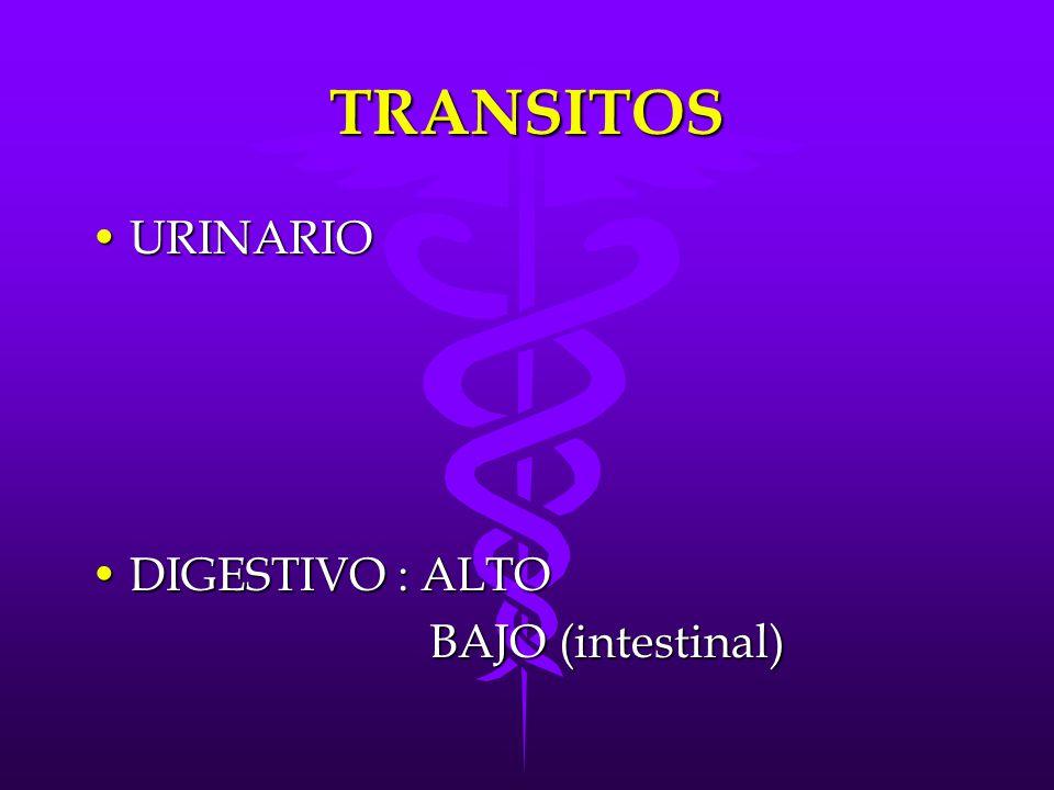 TRANSITOS URINARIO DIGESTIVO : ALTO BAJO (intestinal)